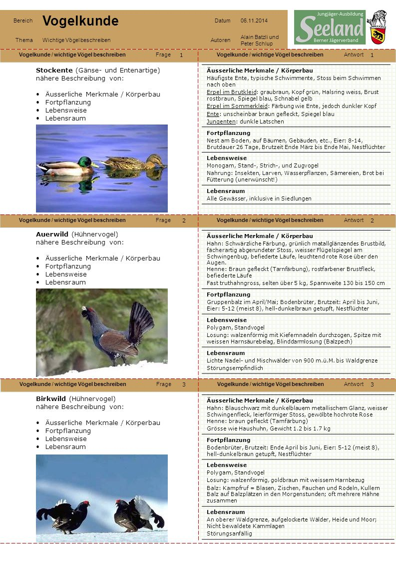 Vogelkunde / wichtige Vögel beschreibenFrageVogelkunde / wichtige Vögel beschreibenAntwort Vogelkunde / wichtige Vögel beschreibenFrageVogelkunde / wi