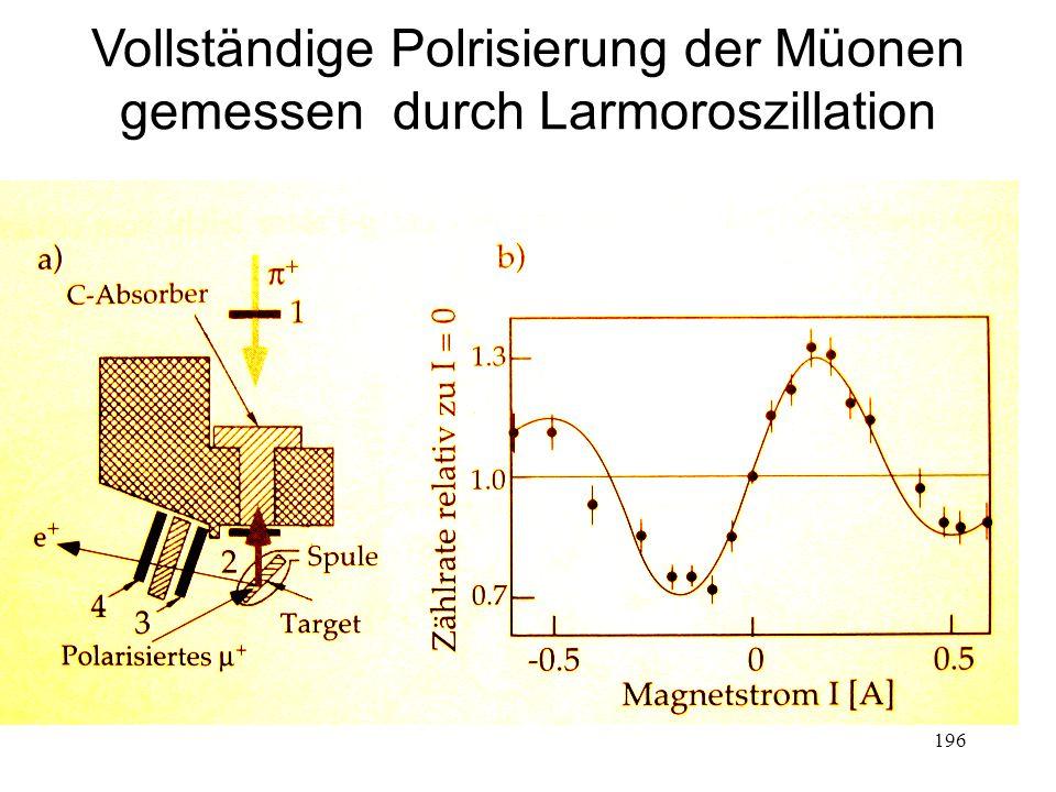 196 Vollständige Polrisierung der Müonen gemessen durch Larmoroszillation