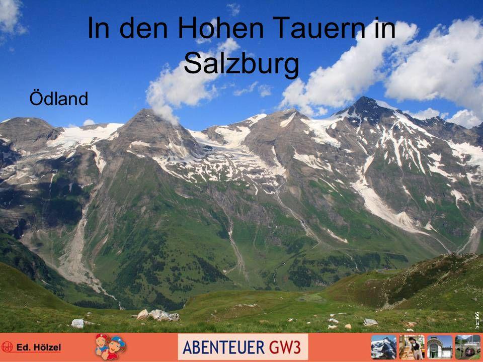 In den Hohen Tauern in Salzburg Ödland berti66