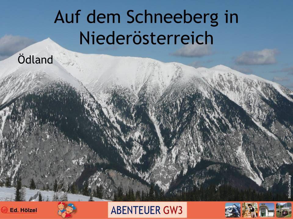 Auf dem Schneeberg in Niederösterreich Ödland Brücke-Osteuropa