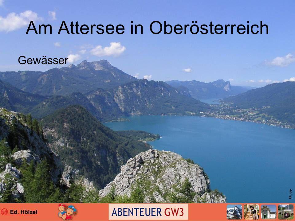 Am Attersee in Oberösterreich Gewässer Msepp