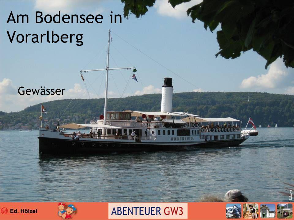 Am Bodensee in Vorarlberg Gewässer Elkawe