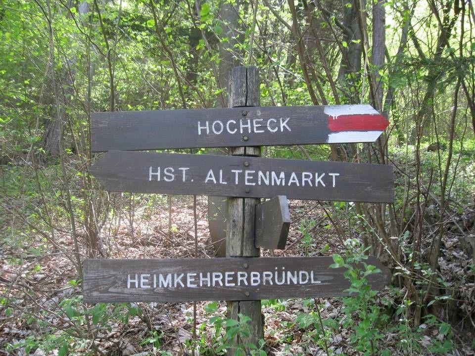 Das Hocheck ist ein 1037 m hoher Berg, die höchste Erhebung im Triestingtal sowie mit 24 km Luftlinie Entfernung, der am nächsten zur Wiener Stadtgrenze liegende Eintausender.