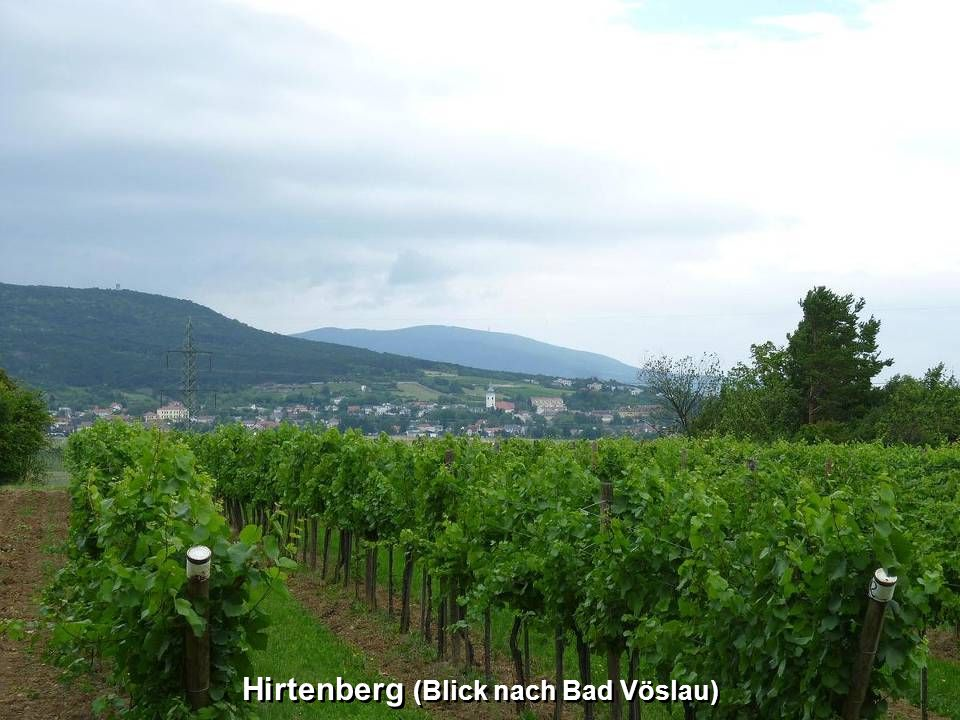 Hirtenberg (Kirche)