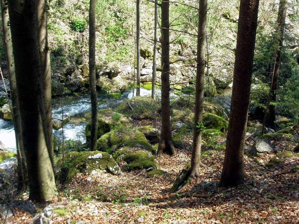 Die Myrafälle (nicht zu verwechseln mit dem Mirafall in den Ötschergräben) befinden sich im Gemeindegebiet von Muggendorf.