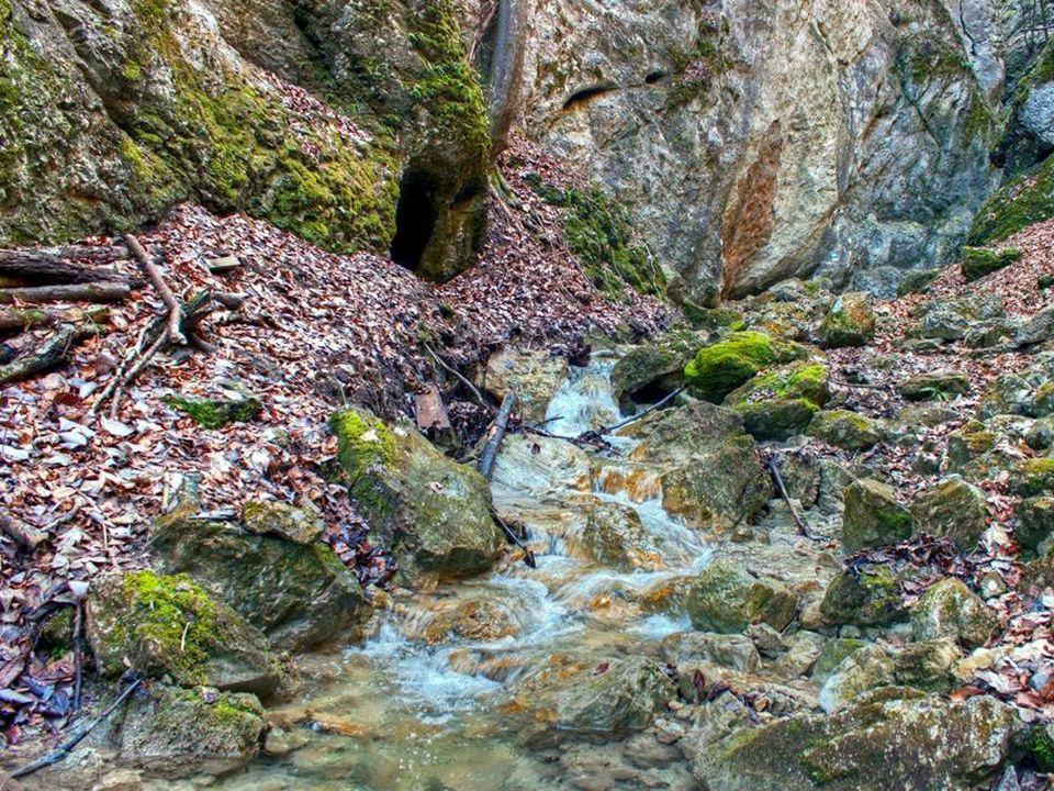 Die Steinwandklamm ist eine Klamm nahe Weißenbach an der Triesting in NÖ, an der Gemeindegrenze zwischen Furth an der Triesting und Muggendorf, die 1884 touristisch erschlossen wurde.