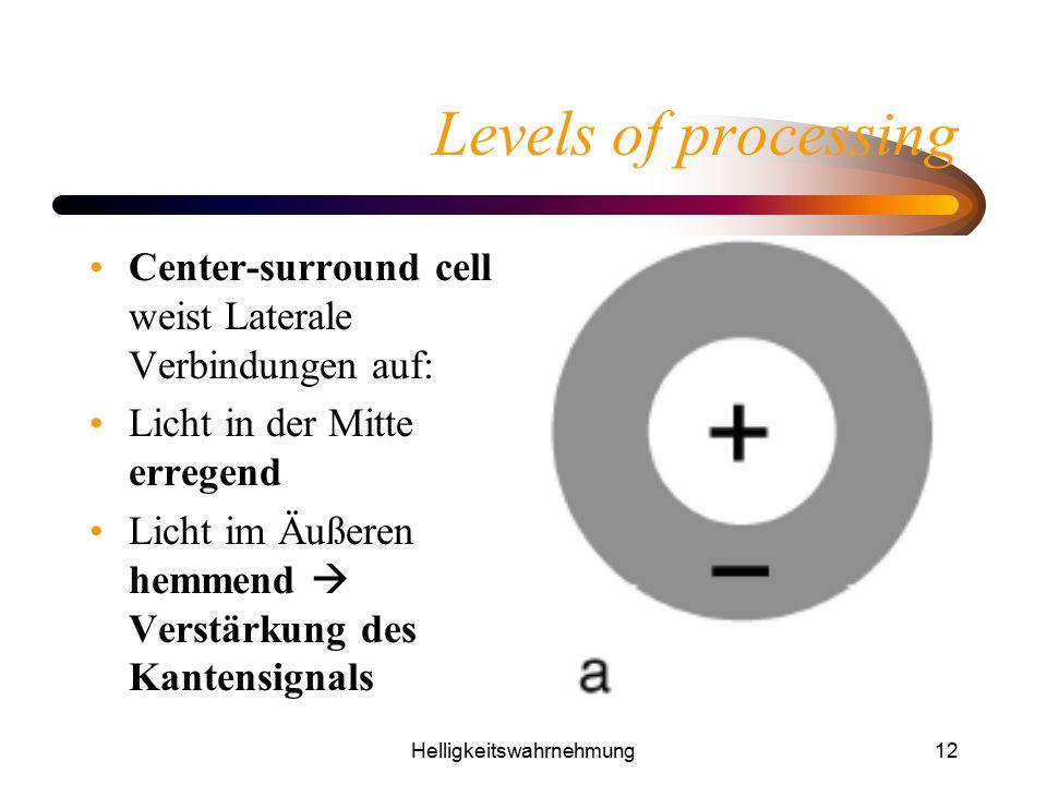 Helligkeitswahrnehmung12 Levels of processing Center-surround cell weist Laterale Verbindungen auf: Licht in der Mitte erregend Licht im Äußeren hemme