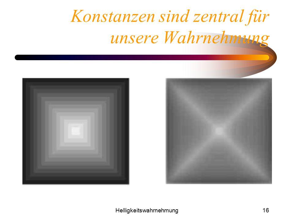 Helligkeitswahrnehmung16 Konstanzen sind zentral für unsere Wahrnehmung