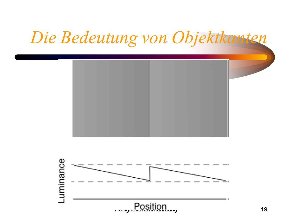 Helligkeitswahrnehmung19 Die Bedeutung von Objektkanten