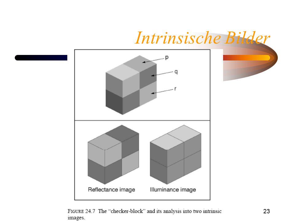 Helligkeitswahrnehmung23 Intrinsische Bilder