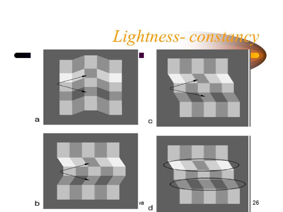 Helligkeitswahrnehmung26 Lightness- constancy