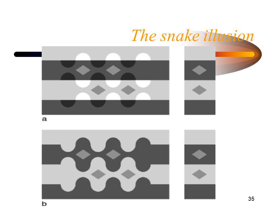 Helligkeitswahrnehmung35 The snake illusion