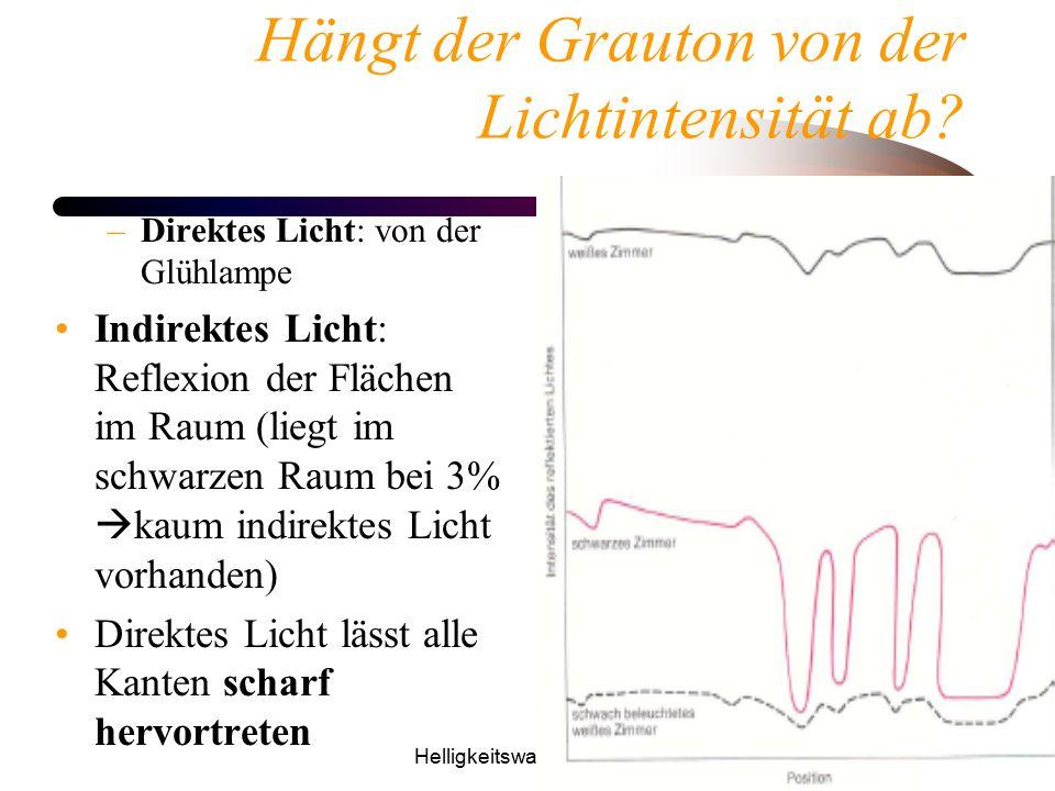 Helligkeitswahrnehmung50 Hängt der Grauton von der Lichtintensität ab? –Direktes Licht: von der Glühlampe Indirektes Licht: Reflexion der Flächen im R
