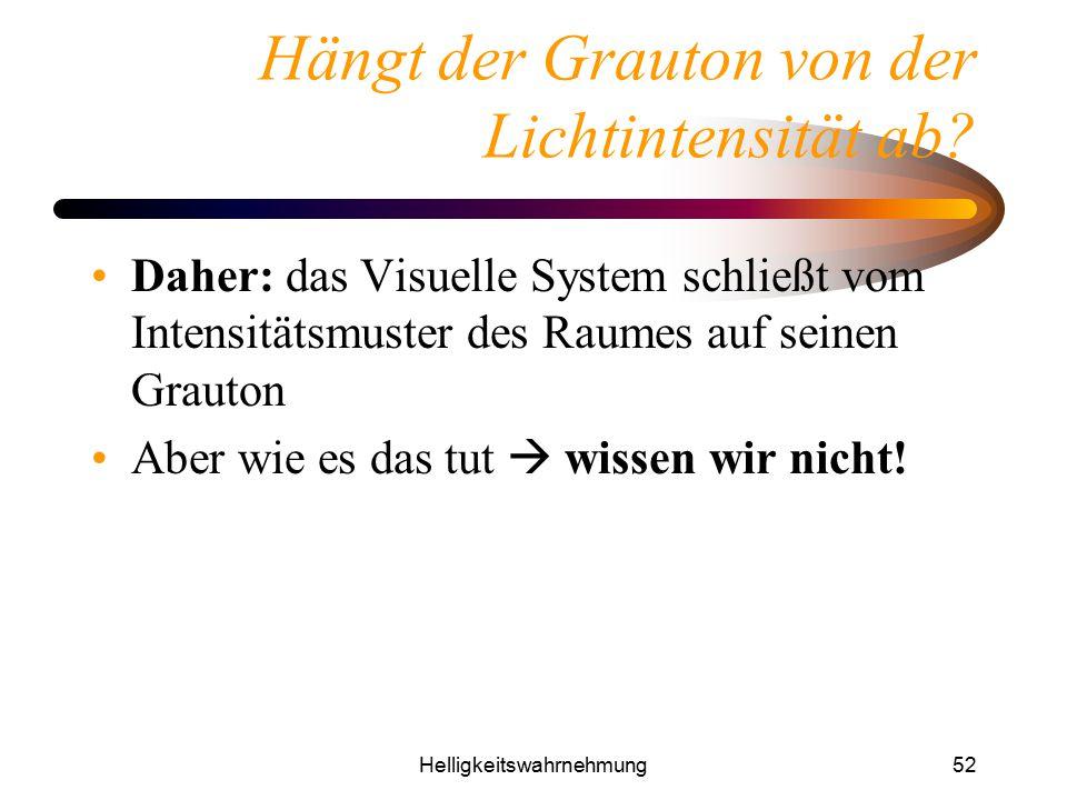 Helligkeitswahrnehmung52 Hängt der Grauton von der Lichtintensität ab? Daher: das Visuelle System schließt vom Intensitätsmuster des Raumes auf seinen