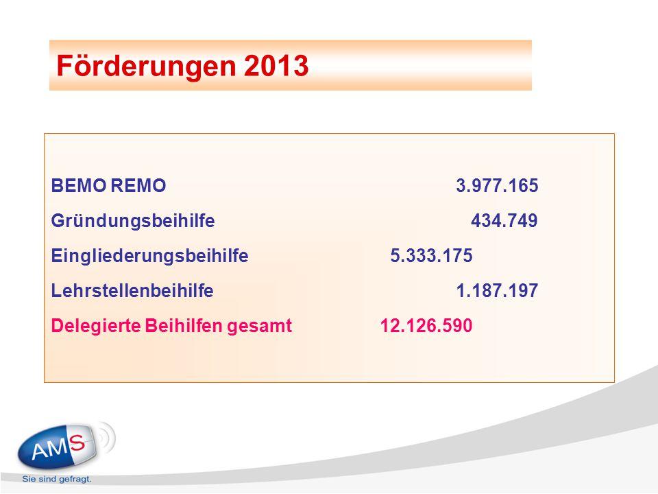 Förderungen 2013 BEMO REMO 3.977.165 Gründungsbeihilfe 434.749 Eingliederungsbeihilfe 5.333.175 Lehrstellenbeihilfe 1.187.197 Delegierte Beihilfen ges