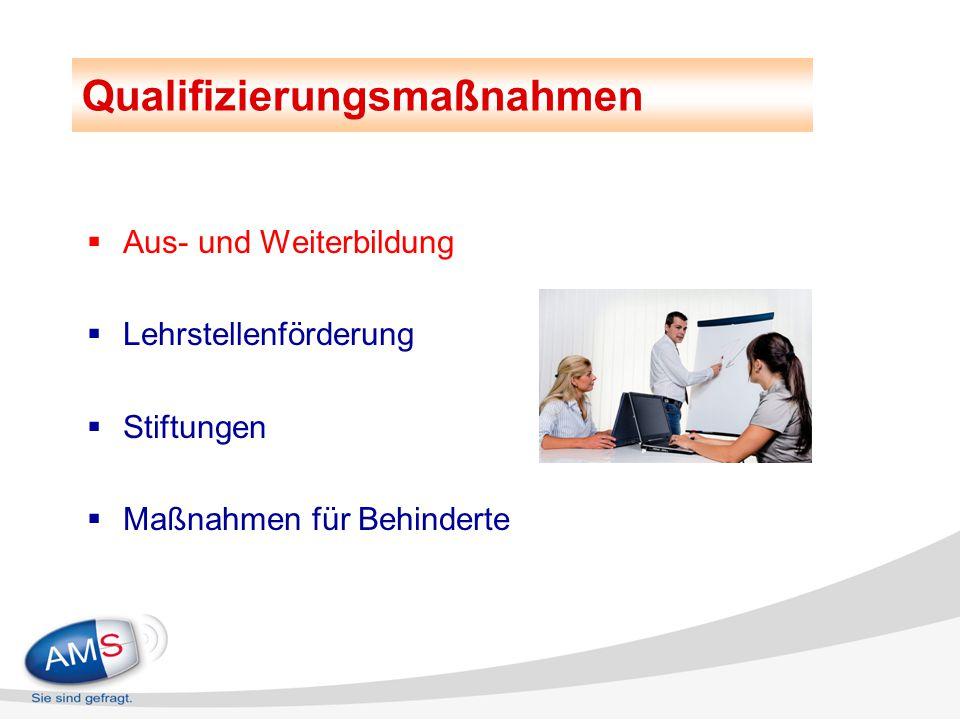  Aus- und Weiterbildung  Lehrstellenförderung  Stiftungen  Maßnahmen für Behinderte Qualifizierungsmaßnahmen