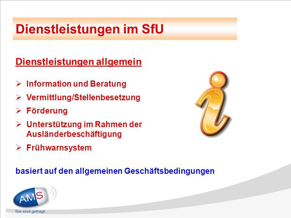 Dienstleistungen allgemein  Information und Beratung  Vermittlung/Stellenbesetzung  Förderung  Unterstützung im Rahmen der Ausländerbeschäftigung