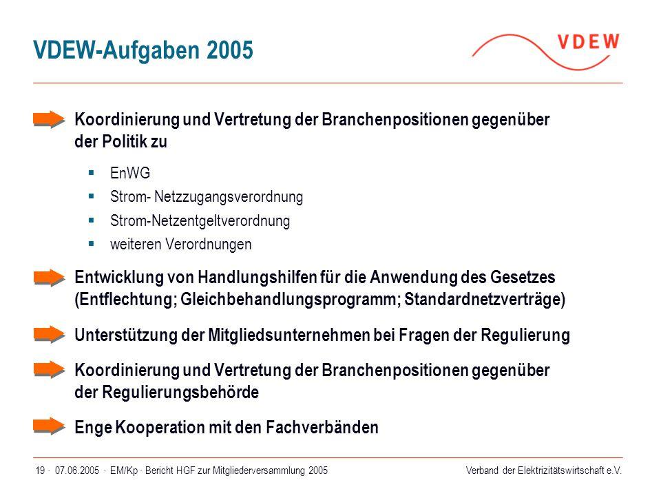Verband der Elektrizitätswirtschaft e.V. 07.06.2005 ·EM/Kp · Bericht HGF zur Mitgliederversammlung 200519 · VDEW-Aufgaben 2005  Koordinierung und Ver
