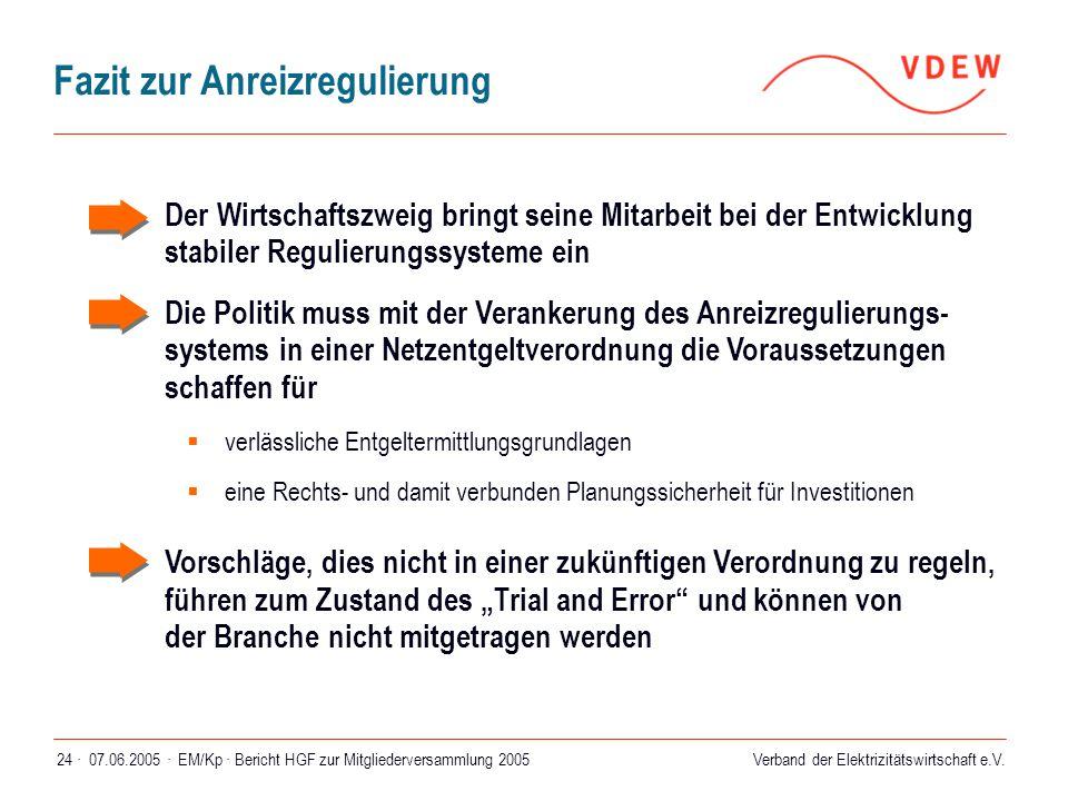 Verband der Elektrizitätswirtschaft e.V. 07.06.2005 ·EM/Kp · Bericht HGF zur Mitgliederversammlung 200524 · Fazit zur Anreizregulierung  Der Wirtscha