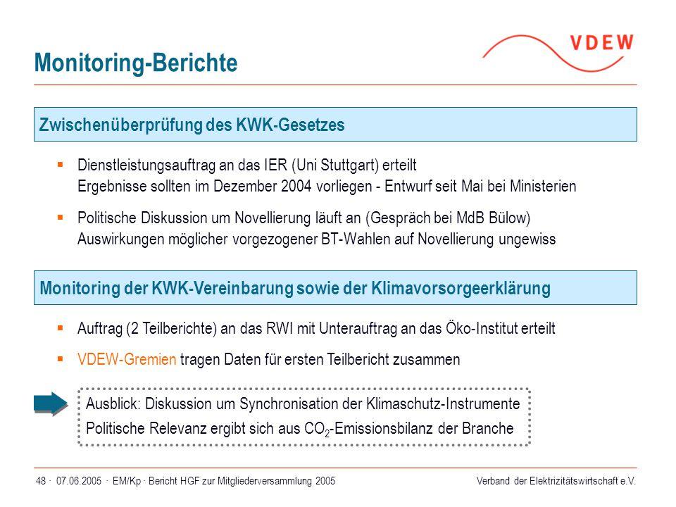 Verband der Elektrizitätswirtschaft e.V. 07.06.2005 ·EM/Kp · Bericht HGF zur Mitgliederversammlung 200548 · Monitoring-Berichte  Dienstleistungsauftr