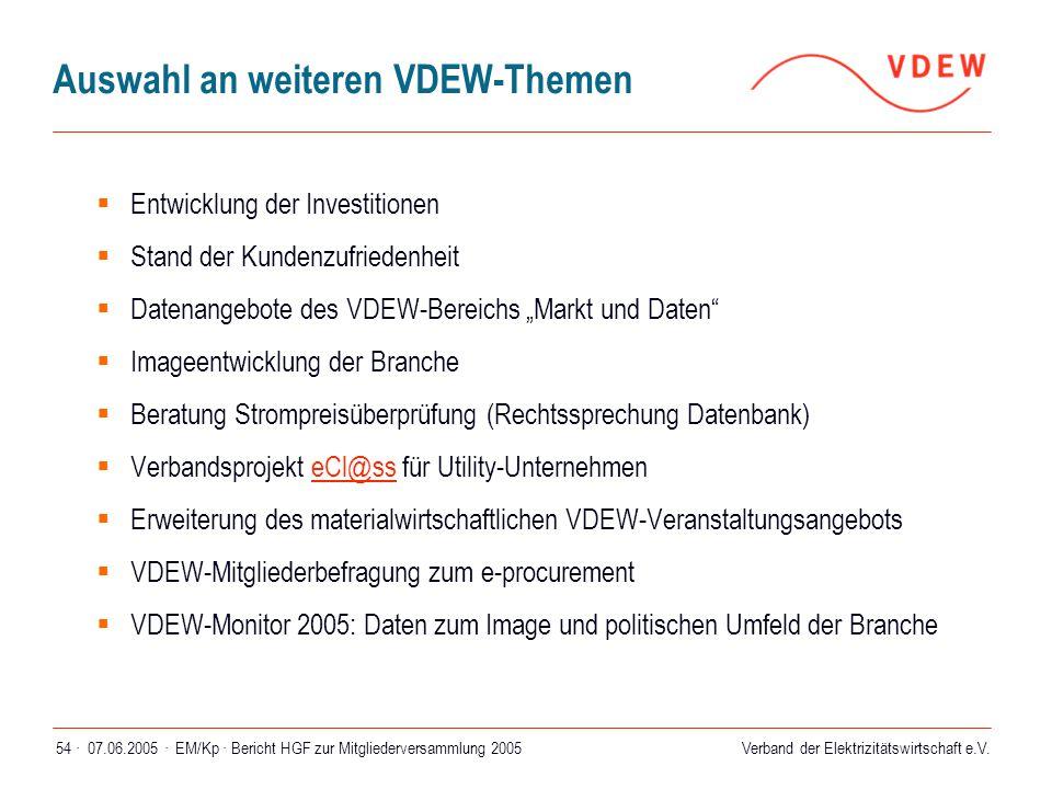 Verband der Elektrizitätswirtschaft e.V. 07.06.2005 ·EM/Kp · Bericht HGF zur Mitgliederversammlung 200554 · Auswahl an weiteren VDEW-Themen  Entwickl