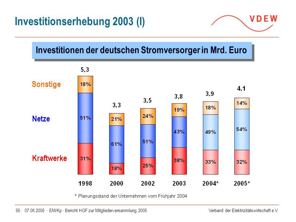 Verband der Elektrizitätswirtschaft e.V. 07.06.2005 ·EM/Kp · Bericht HGF zur Mitgliederversammlung 200555 · Investitionserhebung 2003 (I) Investitione