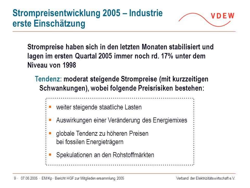 Verband der Elektrizitätswirtschaft e.V. 07.06.2005 ·EM/Kp · Bericht HGF zur Mitgliederversammlung 20059 · Strompreisentwicklung 2005 – Industrie erst