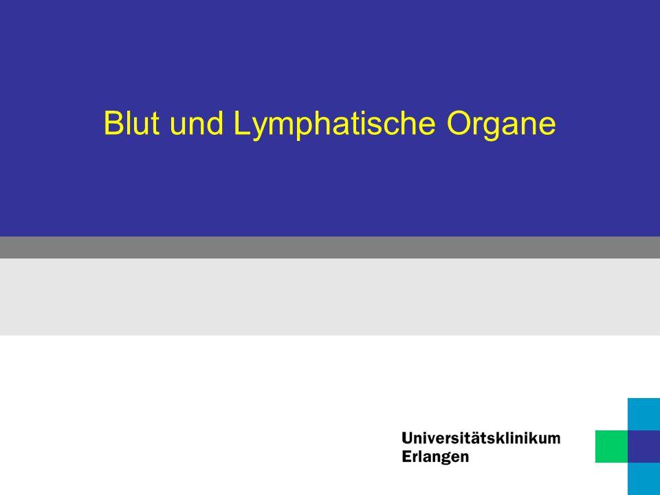 Blut und Lymphatische Organe Blutzellen  Erythrozyten  Leukozyten  Thrombozyten
