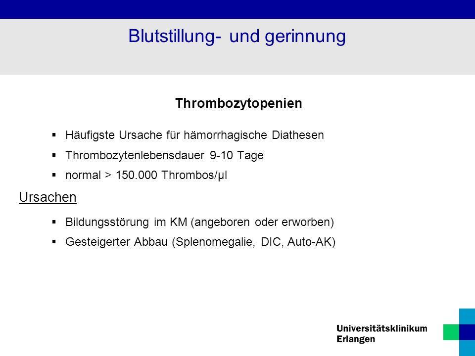 Thrombozytopenien  Häufigste Ursache für hämorrhagische Diathesen  Thrombozytenlebensdauer 9-10 Tage  normal > 150.000 Thrombos/µl Ursachen  Bildu