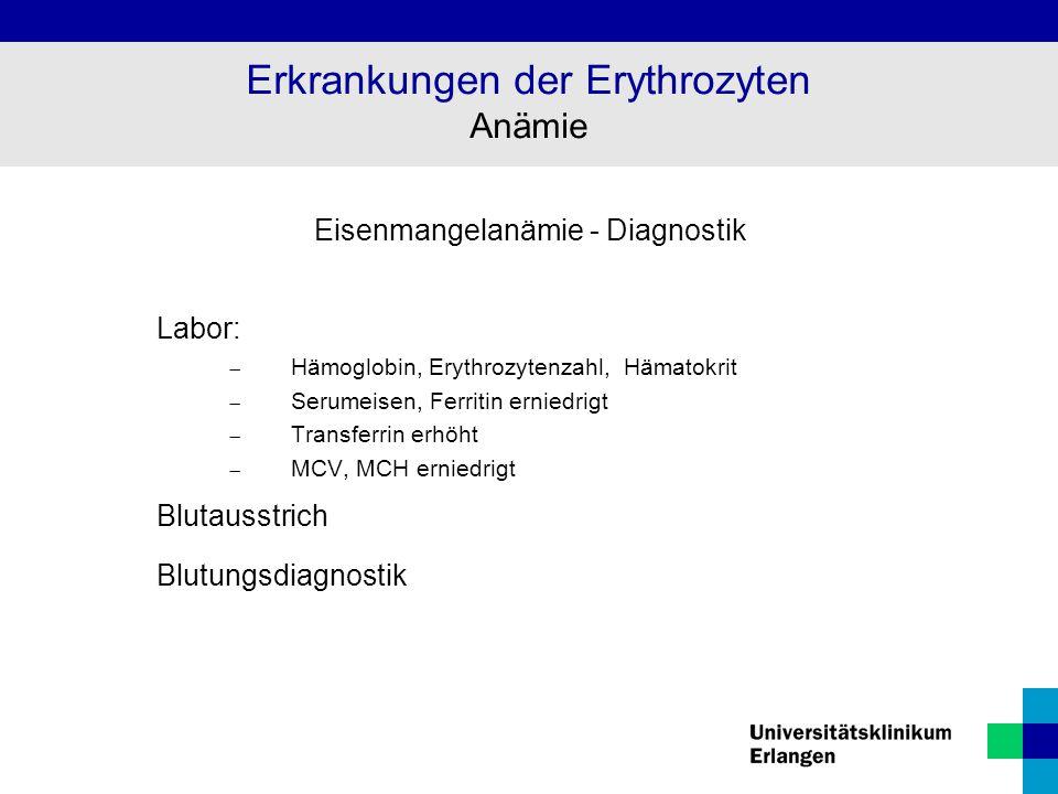 Eisenmangelanämie - Diagnostik Labor:  Hämoglobin, Erythrozytenzahl, Hämatokrit  Serumeisen, Ferritin erniedrigt  Transferrin erhöht  MCV, MCH ern