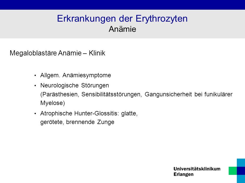 Megaloblastäre Anämie – Klinik Allgem. Anämiesymptome Neurologische Störungen (Parästhesien, Sensibilitätsstörungen, Gangunsicherheit bei funikulärer