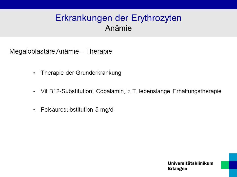 Megaloblastäre Anämie – Therapie Therapie der Grunderkrankung Vit B12-Substitution: Cobalamin, z.T. lebenslange Erhaltungstherapie Folsäuresubstitutio