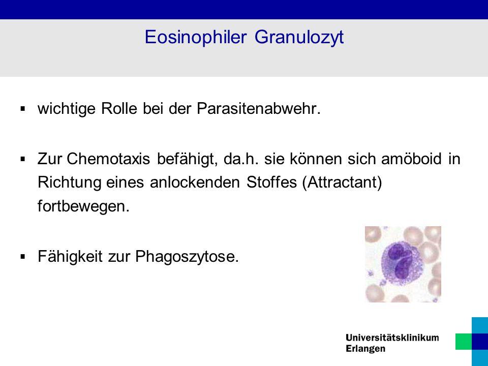 Eosinophiler Granulozyt  wichtige Rolle bei der Parasitenabwehr.  Zur Chemotaxis befähigt, da.h. sie können sich amöboid in Richtung eines anlockend