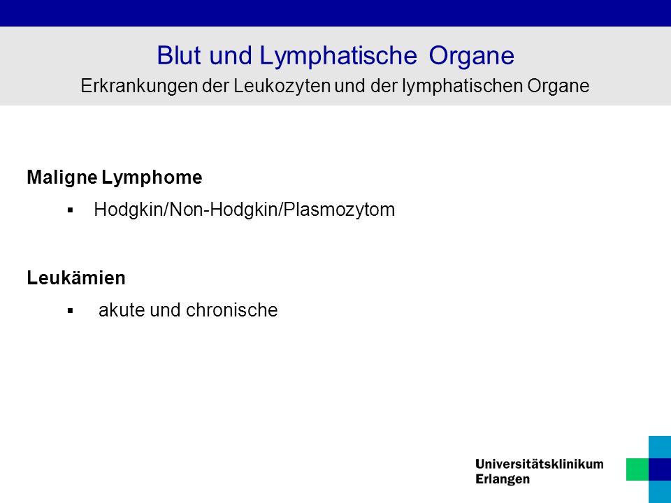 Maligne Lymphome  Hodgkin/Non-Hodgkin/Plasmozytom Leukämien  akute und chronische Blut und Lymphatische Organe Erkrankungen der Leukozyten und der l
