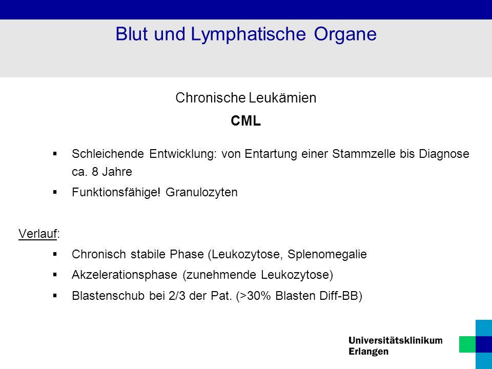 Chronische Leukämien CML  Schleichende Entwicklung: von Entartung einer Stammzelle bis Diagnose ca. 8 Jahre  Funktionsfähige! Granulozyten Verlauf: