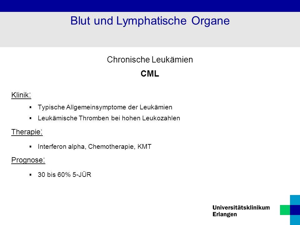 Chronische Leukämien CML Klinik :  Typische Allgemeinsymptome der Leukämien  Leukämische Thromben bei hohen Leukozahlen Therapie :  Interferon alph
