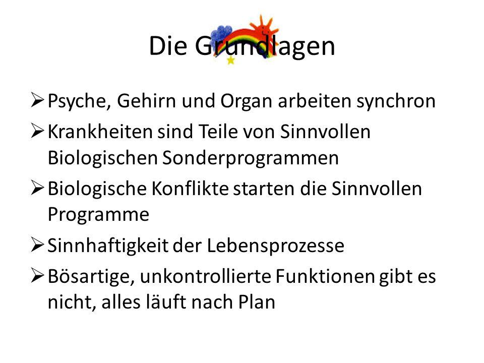 Systematik Dr.Hegemann Siebtes Biologisches Naturgesetz 1.