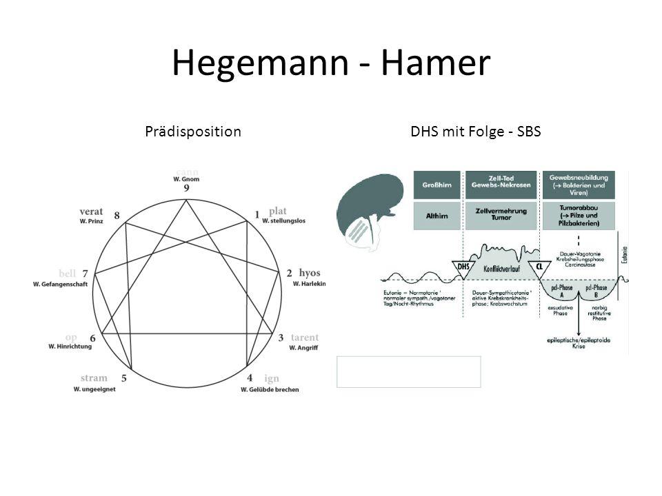 Hegemann - Hamer PrädispositionDHS mit Folge - SBS
