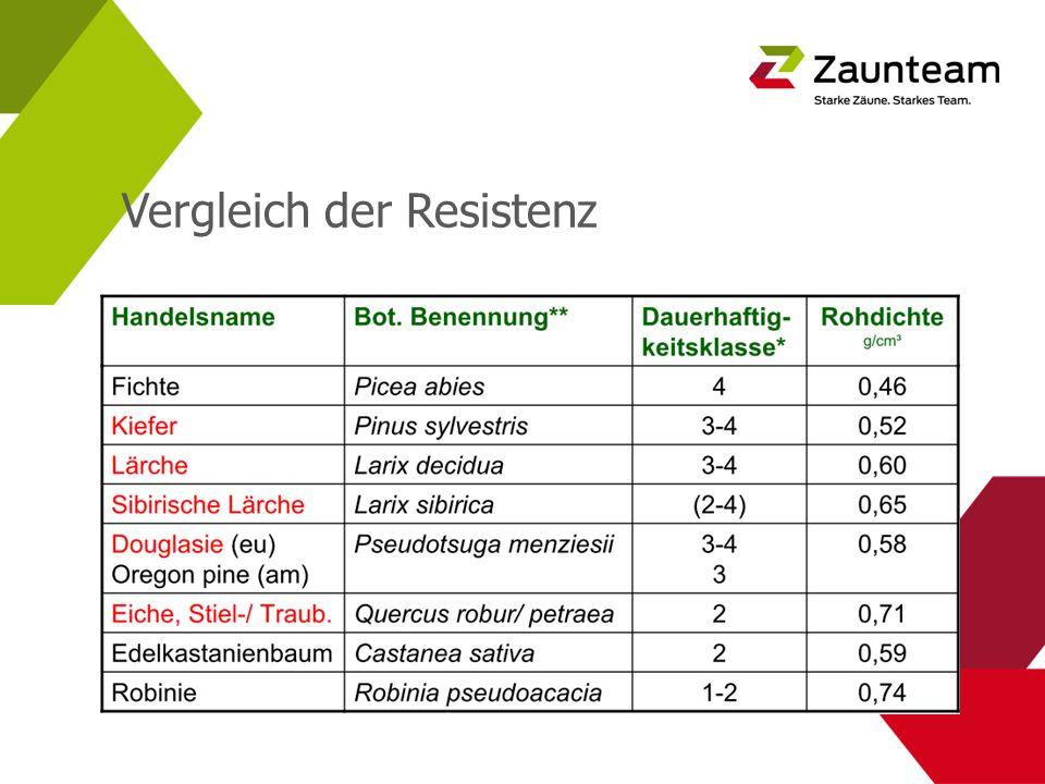 Umwelteinflüsse Beanspruchung von Holz im Aussenbereich.