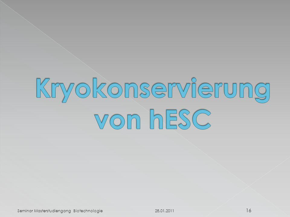 28.01.2011 Seminar Masterstudiengang Biotechnologie 16