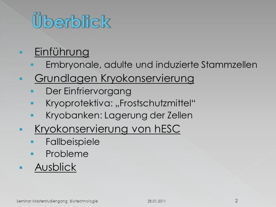 Zelleffekte bei Vitrifikation Schnelles Abkühlen führt zu intrazellulärer Eisbildung ( flash out Effekt )  Schädigungen der Zellen durch intrazelluläre Eisbildung aufgrund von ice seeding durch Membranporen Zwei-Faktor-Hypothese (Mazur et al.) [6]:[6] 28.01.2011 13 Seminar Masterstudiengang Biotechnologie Abb.