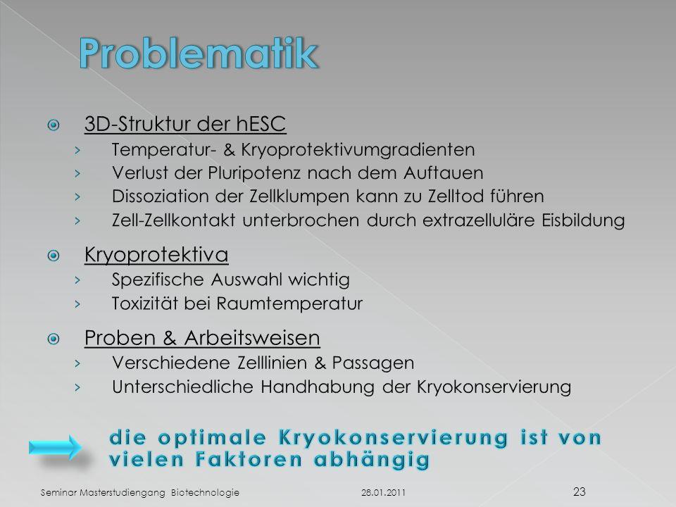 28.01.2011 23 Seminar Masterstudiengang Biotechnologie