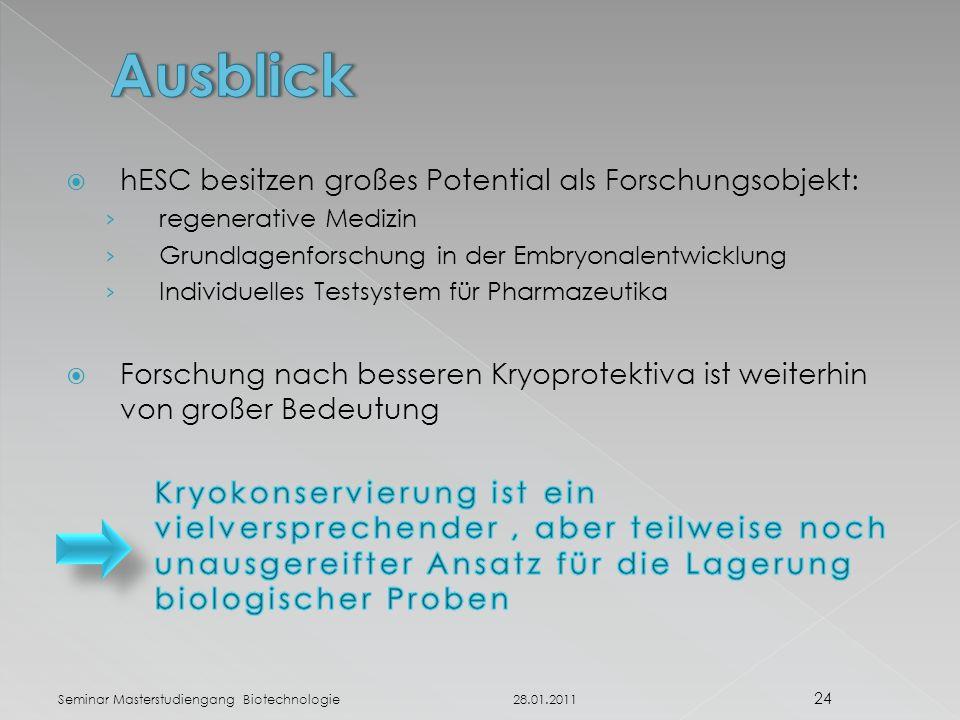 28.01.2011 24 Seminar Masterstudiengang Biotechnologie