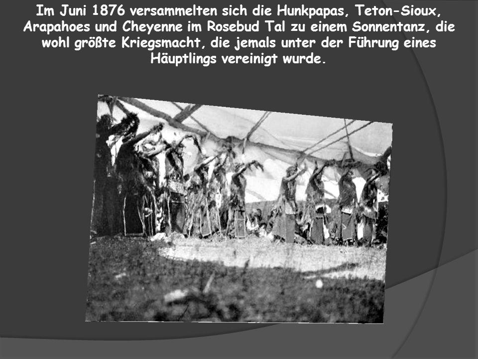In den Black Hills wurde im Jahre 1872 Gold gefunden, was dazu führte, dass Tausende von Goldsuchern in die Heiligen Berge der Dakota einfielen.
