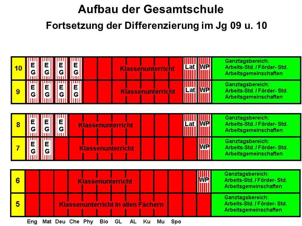 Aufbau der Gesamtschule Fortsetzung der Differenzierung im Jg 09 u. 10