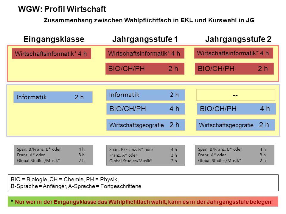 Wirtschaftsinformatik* 4 h BIO/CH/PH2 h Informatik2 h -- Informatik2 h BIO/CH/PH4 h Wirtschaftsgeografie 2 h * Nur wer in der Eingangsklasse das Wahlpflichtfach wählt, kann es in der Jahrgangsstufe belegen.