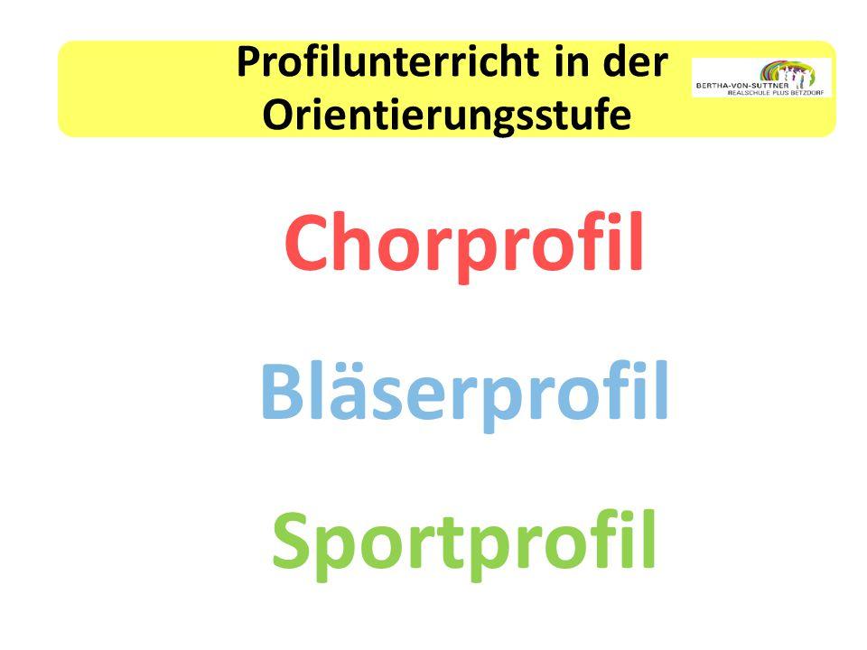 Profilunterricht in der Orientierungsstufe Chorprofil Bläserprofil Sportprofil