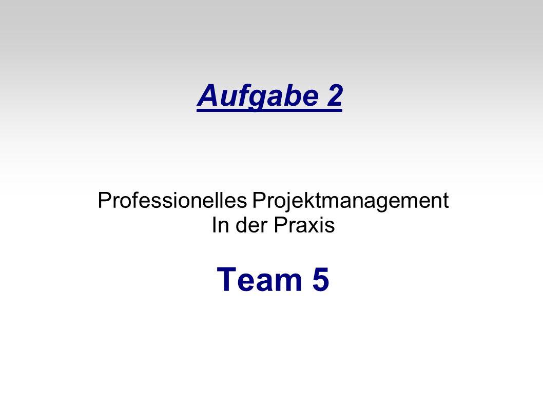 Aufgabe 2 Professionelles Projektmanagement In der Praxis Team 5