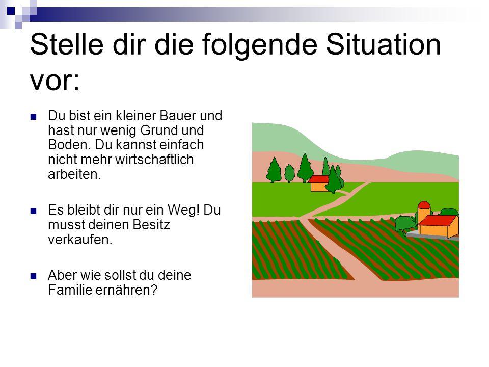 Stelle dir die folgende Situation vor: Du bist ein kleiner Bauer und hast nur wenig Grund und Boden. Du kannst einfach nicht mehr wirtschaftlich arbei
