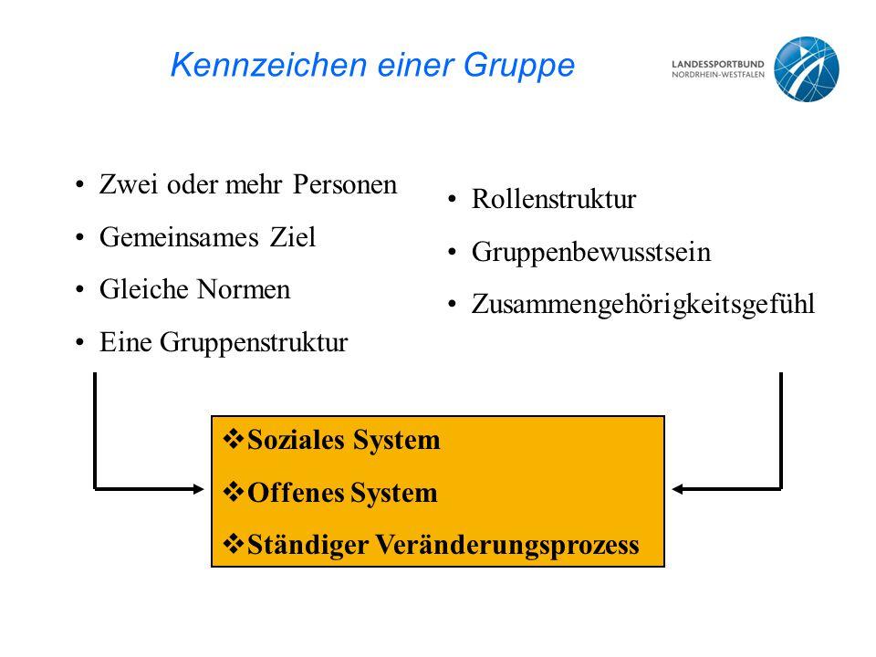Kennzeichen einer Gruppe Zwei oder mehr Personen Gemeinsames Ziel Gleiche Normen Eine Gruppenstruktur Rollenstruktur Gruppenbewusstsein Zusammengehörigkeitsgefühl  Soziales System  Offenes System  Ständiger Veränderungsprozess